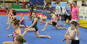 gymnastics-callout